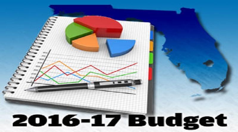 Fedral Budget 2016-17