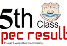 5th Class PEC Results
