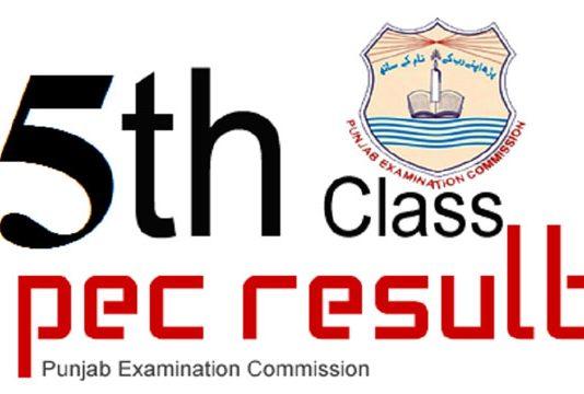 5th Class PEC Results