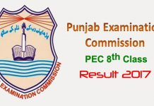 PEC 8th Class Result 2017