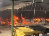 Islamabad Sasta Bazaar Caught Fire (9)