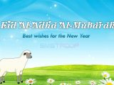 Eid-ul-Azha 2017 Wallpapers (13)