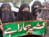 Kashmir Day HD Wallpapers (11)