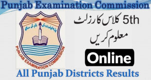 5th Class Result Online