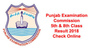 PEC 5th 8th Class Result 2018