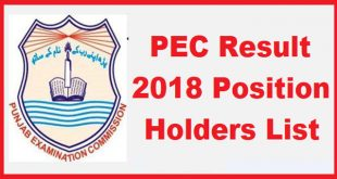 PEC Result 2018 Position Holders