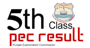 PEC Result 5th Class